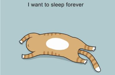 ... plaatjes over slapen die jouw puber zeker begrijpt!