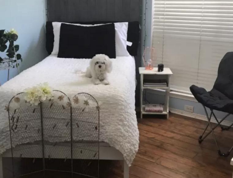 'Eh schat, we hebben je slaapkamer aan de hond gegeven'